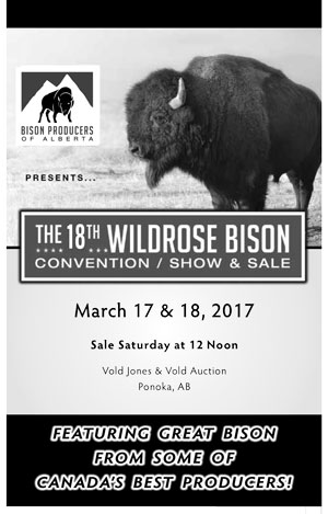 Wildrose_Bison_Show__Sale_2017-(1)-1.jpg